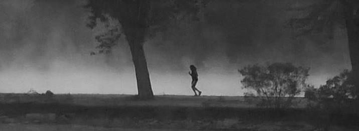 Woman runs early along a river bank.